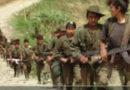 EN PANDEMIA CRECE GUERRILLA: SUBVERSIVOS ARMADOS TOMAN NUEVO PUEBLO EN TÁCHIRA